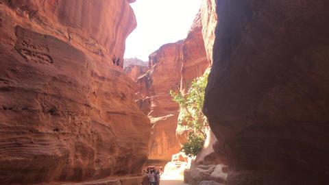 Petra, Jordan - October 17, 2019: tour groups study canyon part 2 Live Action
