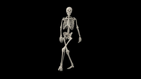 Skeleton close up GIF