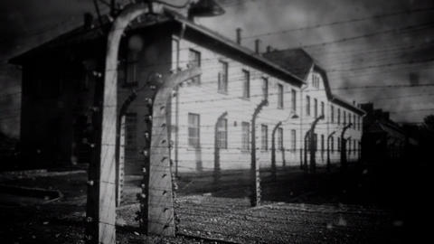 Auschwitz Concentration Camp Footage
