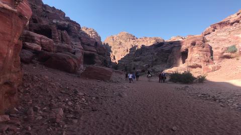 Petra, Jordan - October 17, 2019: tour groups study canyon part 6 Live Action