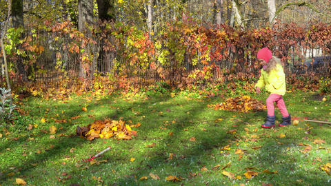 Naughty little girl kick raked leaves in garden. Crazy child frolic in yard GIF
