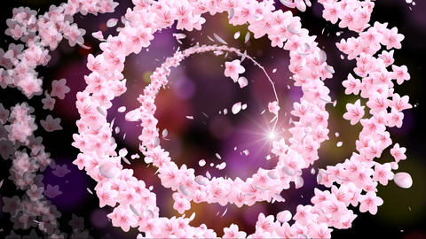 Rotating cherry blossom Animation