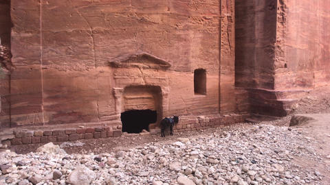 Petra, Jordan - mountains and cliffs with an amazing history part 5 Live Action
