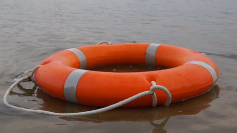 Orange lifebuoy floating in water near shore Live Action