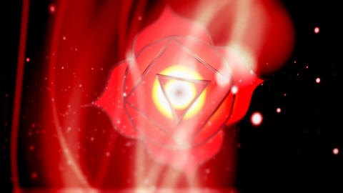 Root Chakra Muladhara Chakra Mandala Spins in Energy Field Live Action