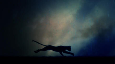 A Black Panther Runs in Loop Under a Rain and Lightning Storm at Night Footage