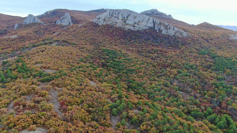 Smooth flight around the mountain range covered by forest Autumn Time overcast GIF