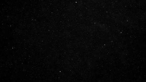 Natural organic dust particles floating on black background Live Action