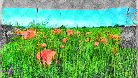 4K Lush Summer Field Under Blue Sky Handdraw Art Animation