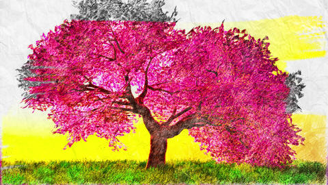 4K Spring Tree in Full Pink Bloom Handdraw Art Animation