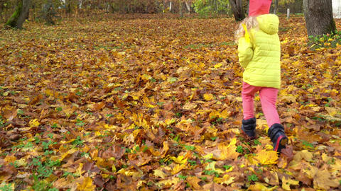 Camera following little girl running through autumn colorful park. Gimbal follow Live Action