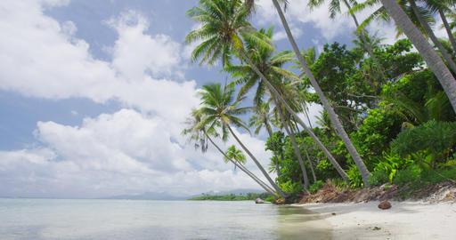 Beach Vacation Travel Holidays in French Polynesia - Paradise beach on Bora Bora Live Action