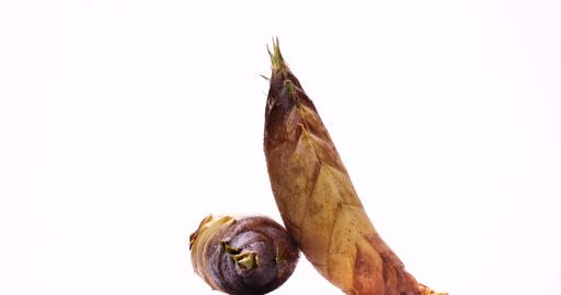 Taken on a white background while turning a freshly-taken bamboo shoot Live Action