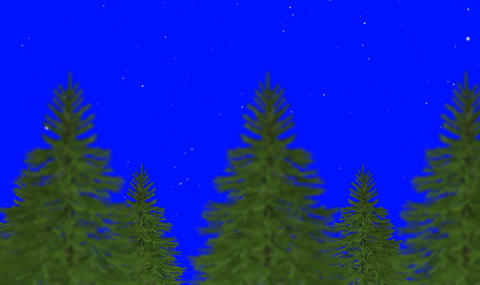 Christmas Trees with Snow Flakes On a Blue Screen Footage