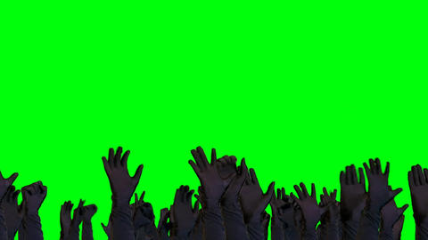 Crowd Raising hands and Cheering on a Green Screen Background Filmmaterial