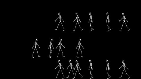 Group of Skeletons Walking in Both Sides on a Black Background Footage