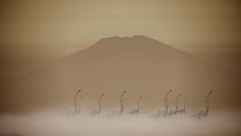 Dinosaurs Herd Walking Through a Sand Storm in a Desert Footage