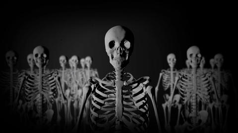 Group of Skeletons Standing in the Dark staring at the Camera in a Creepy Look Footage