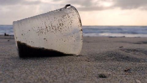 Plastic glass Garbage on sandy sea shore sunset wind motion,polluted nature 4k Live Action