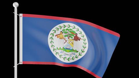 FLAG OF BELIZE WAVE W/ALPHA CHANNEL Animation