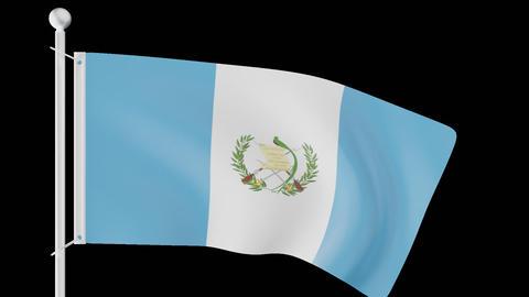 FLAG OF GUATEMALA WAVE W/ALPHA CHANNEL Animation