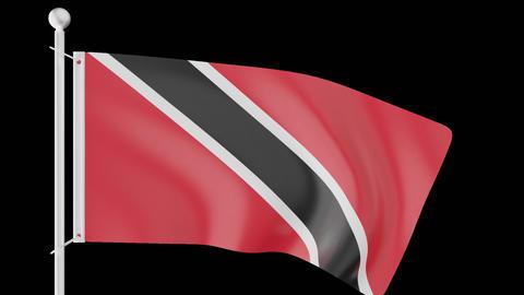 FLAG OF TRINIDAD AND TOBAGO WAVE W/ALPHA CHANNEL Animation