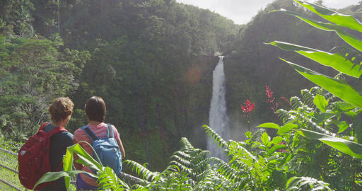 Hawaii travel tourists at nature waterfall landscape. Travelers couple looking Live Action