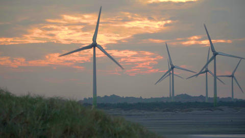 Windmills and sunset on the coast of Taiwan Live影片