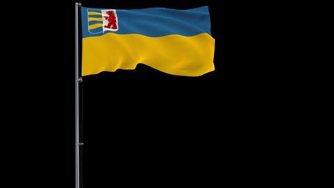 Zakarpattia Oblast flag on transparent background, 4k footage with alpha Animation