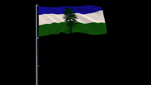Cascadia flag on transparent background, 4k footage with alpha transparency Animation