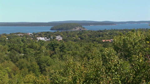 A white cruise ship is seen in the distance of a forest... Stock Video Footage