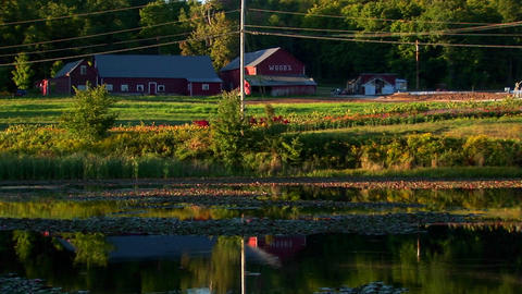 A farm and field near a body of water at sunset in Vermont Stock Video Footage