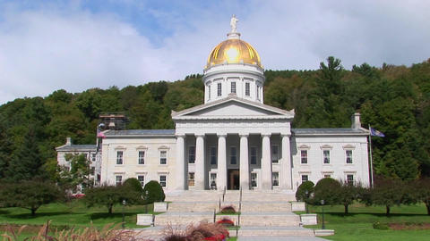 Trees surround the gold domed capital building in... Stock Video Footage