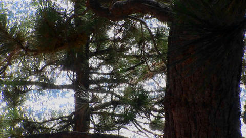 An area of the Sierra Nevada mountains sparkles through... Stock Video Footage