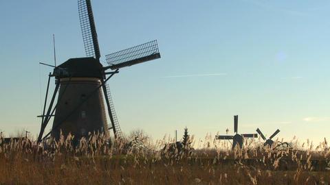 Windmills stand in the tall grass in Holland Stock Video Footage