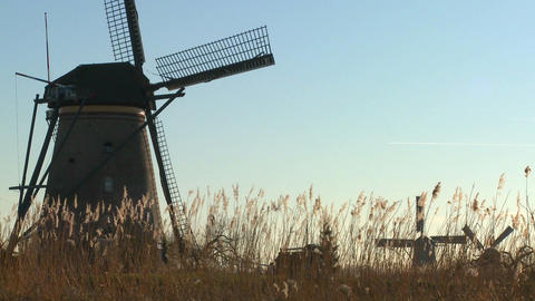Windmills rise out of the grass in Holland Footage