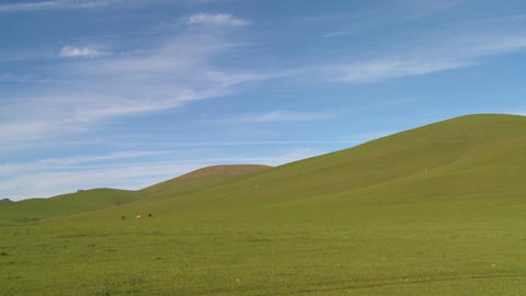 Green fields roll to the horizon against a deep blue sky Footage