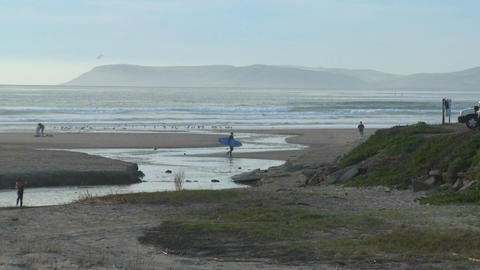 A surfer walks across an estuary along the Central... Stock Video Footage