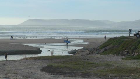 A surfer walks across an estuary along the Central... Stock Video Footage