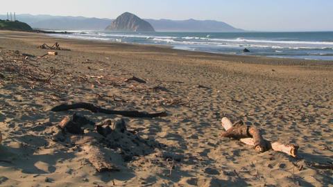 An establishing shot of a large rock along the coast of California near Morro Bay with driftwood Footage