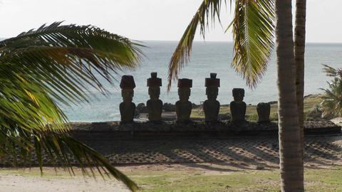 Easter Island statues with the ocean in the background and palms waving Footage