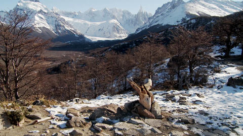 Tilt up to the remarkable mountain range of Fitzroy in... Stock Video Footage
