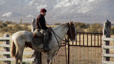 Gaucho cowboys from Argentina ride horses and watch over... Stock Video Footage