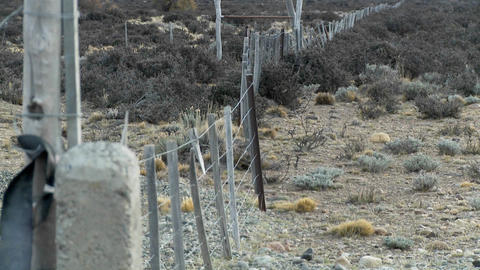 A lonely fence on the windswept plains of Patagonia Stock Video Footage