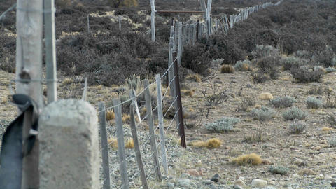 A lonely fence on the windswept plains of Patagonia Footage