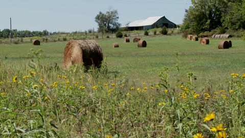 Bales of hay in the fields of rural farm Stock Video Footage
