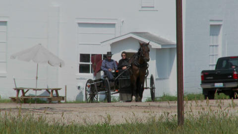 An Amish horse and buggy moves amongst modern traffic Stock Video Footage