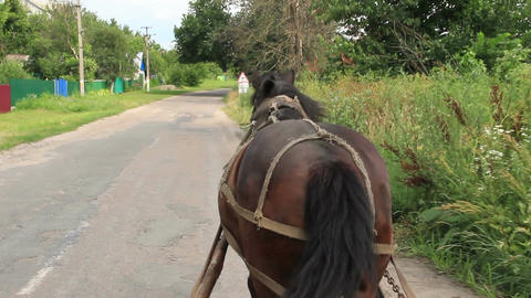 Rural countryside scape, horse harnessed carrying cart, village Footage