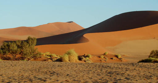 People are walking on a massive sand dune, tourism in Namib desert, 4k Live Action