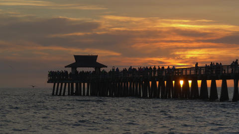 Naples Beach and Fishing Pier at Sunset, Florida Live Action